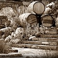 Wine Country Sepia Vignette by David Ross
