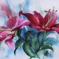 Wine Lillies In Pastel Watercolour by Shabby Chic and Vintage Art