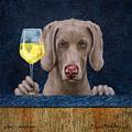 Wine-maraner by Will Bullas