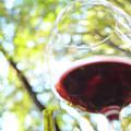 Wine On The Farm by John Finch