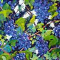 Wine On The Vine by Richard T Pranke