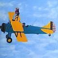 Wing Walker by Karen Jane Jones