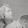 Winged Cherub by Shanna Hyatt