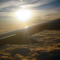 Winged Sun by Larry Underwood