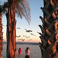Wings Over The Palms by Christine DuMouchel