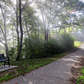 Winona Minnesota Foggy Path With Bench Photograph by Kari Yearous