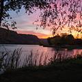 Winona Minnesota Pink Sunset With Branches by Kari Yearous