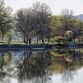 Winona Mn Spring Trees And Pier by Kari Yearous