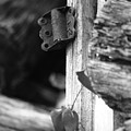 Winslow Cabin Door Detail by Curtis J Neeley Jr