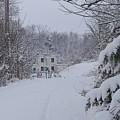 Winter 2010 by Luciana Seymour