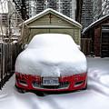 Winter-4 by Joseph Amaral