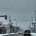 Winter-5 by Joseph Amaral