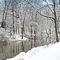 Winter Along The Riverbank by Kay Novy