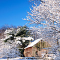 Winter Barn Scene-warren Ct by Thomas Schoeller