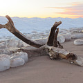 Winter Beach by Alison Gimpel