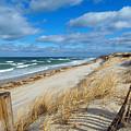 Winter Beach View by Dianne Cowen