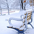 Winter Bench by Elena Elisseeva