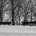 Winter Benches by Dylan Punke