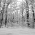 Winter Blast by Joshua McCullough