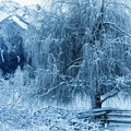 Winter Blues by Dave Steers