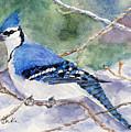 Winter Blues by Mary Benke