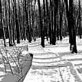 Winter Boardwalk In Black And White by Debbie Oppermann