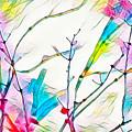 Winter Branch Colors by Scott Carlton