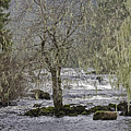 Winter Colors On The Klawock by Richard Rivard