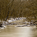 Winter Creek by Bonnie Willis