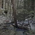 Winter Creek by Kevin Humphrey
