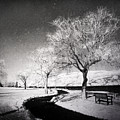 Winter Darkness by Tara Turner