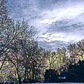 Winter Day 3 by Brenda Plyer