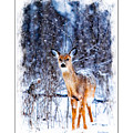 Winter Deer 1 by Ericamaxine Price