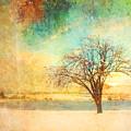 Winter Dreams by Tara Turner