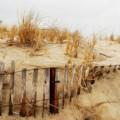 Winter Dune - Jersey Shore by Angie Tirado