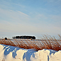 Winter Dunes by Bonfire Photography
