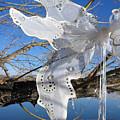 Winter Fairy Wings by Katherine Nutt