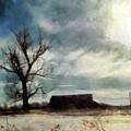 Winter Farm by Janine Riley