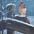 Winter Female Cardinal by Sheli Paez