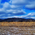 Winter Field by Chris Flees