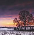 Winter Fields by Pixabay