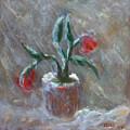 Winter Flowers by Katt Yanda