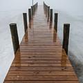 Winter Fog by Kristopher Schoenleber