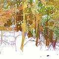 Winter Forest 1 by Jeelan Clark