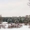 Winter Glade Under Snow. by Vadzim Kandratsenkau