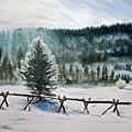 Winter Glow by Monika Degan