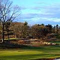 Winter Golf by John Wall