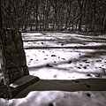 Winter Grave by George Christian