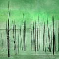 Winter Green  7913green by Karen Celella