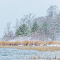 Winter Hoarfrost On The River by Patti Deters